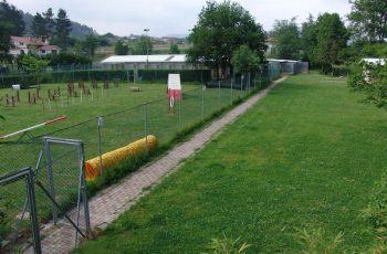 Residencias Caninas en Canal de Berdun 16