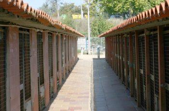 Residencias Caninas en Alfoz de Quintanaduenas 18