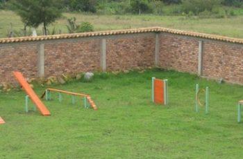 Residencias Caninas en Valdecanas de Tajo 14