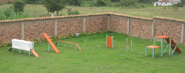 Las Mejores Residencias Caninas en Pineda de Giguela