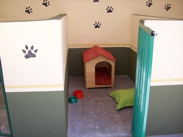 Residencias Caninas en Boltana