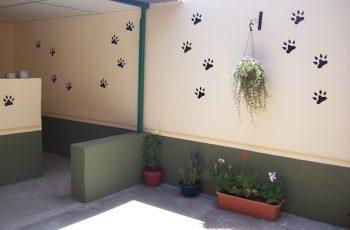 Residencias Caninas en Celadas 15