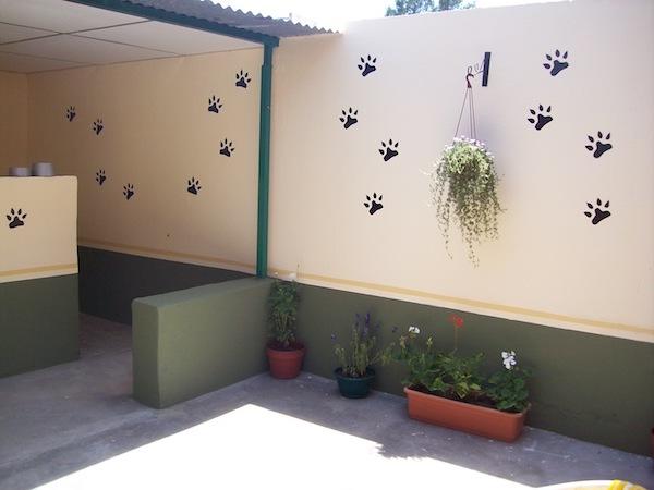 Residencias Caninas en Escorihuela