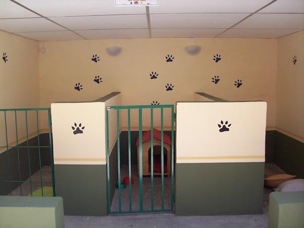 Residencias Caninas en Cabezabellosa