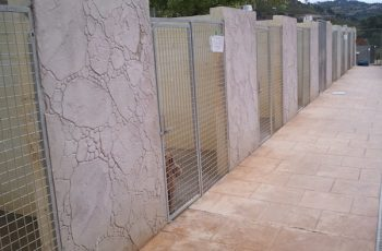 Residencias Caninas en Eljas 18