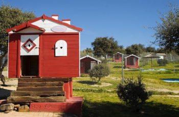 Residencias Caninas en Esparragalejo 16