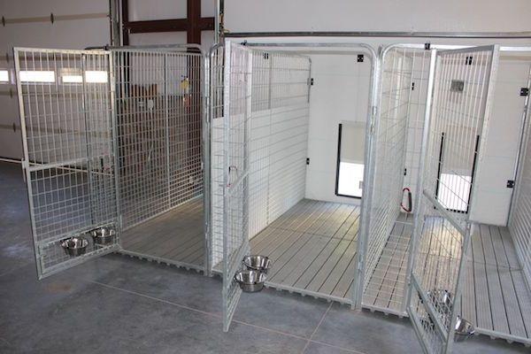 Las Mejores Residencias Caninas en La Mata