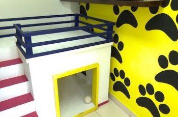 Residencias Caninas en Mas de las Matas 14