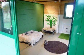 Residencias Caninas en Bernuy de Porreros 15