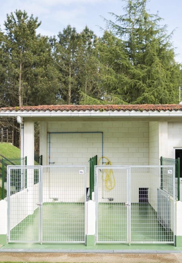 Residencias Caninas en Galvez