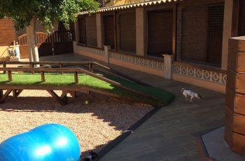 Residencias Caninas en Los Navalucillos 16
