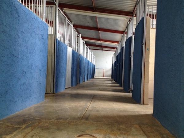 Residencias Caninas en Padilla de Abajo