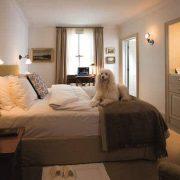 fotos-hotelesperros-lujo-142