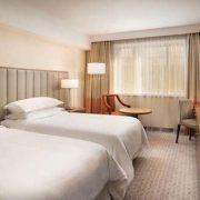 fotos-hotelesperros-lujo-158