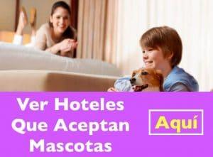 Hoteles Que Aceptan Mascotas cerca de Casarrubios del Monte
